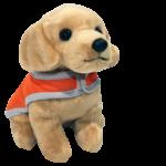 toy dog in orange training coat