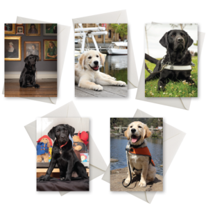 five cards with photos of dogs