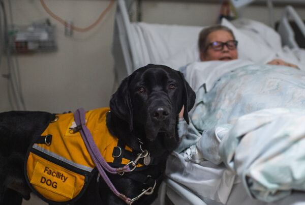 dog standing next to a patient in a hospital bed