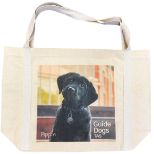 tote bag with two handles